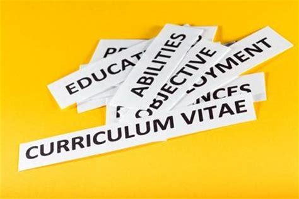 Sample academic resume cv
